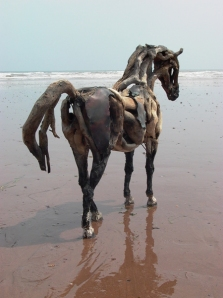 Heather Jansch - Captain Cleo